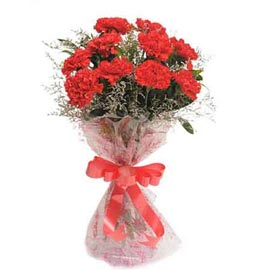 buy 10 Red carnations Bunch Same Day Delivery