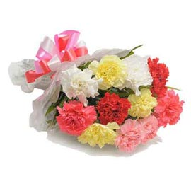 Send 10 mix carnations Bunch Same Day Delivery
