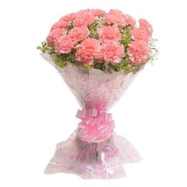 Send 15 peach carnations Bunch Xpress Delivery