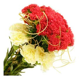 buy Red & Yellow carnations Bunch Urgent Delivery