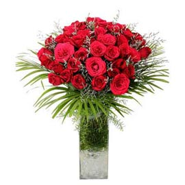 buy 20 Red roses glass Vase 24 hrs Delivery