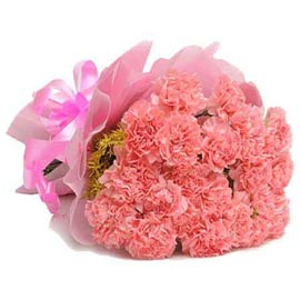 Send 20 Pink carnations Bunch morning Delivery