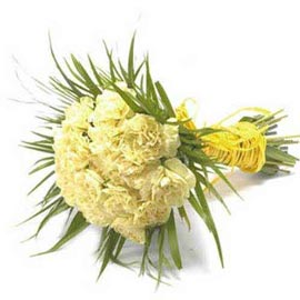 buy 20 Yellow carnations Bunch Urgent Delivery