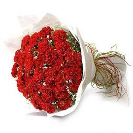 buy 25 Red carnations Bunch 24 hrs Delivery