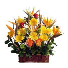 buy roses gerberas & bop Basket Midnight Delivery
