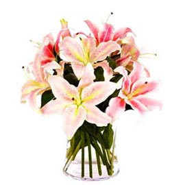 Send 6 Pink lilies glass Vase designer Arrangement 24 hrs Delivery