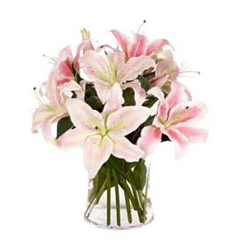 buy 6 Pink lilies glass Vase Midnight Delivery
