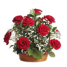 buy 20 Red roses cane round Basket Same Day Delivery