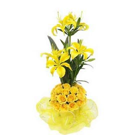 buy Yellow roses n lilies Basket Urgent Delivery