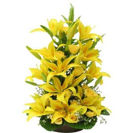 buy Yellow lilies grand Basket Urgent Delivery