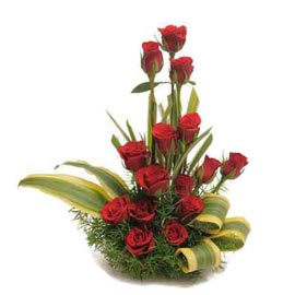 Send 15 Red roses cane Basket 24 hrs Delivery
