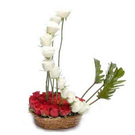 buy 24 White n Red roses cane Basket Same Day Delivery