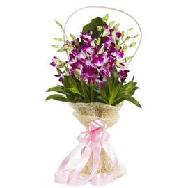 buy 6 purple orchids jute Bunch Midnight Delivery