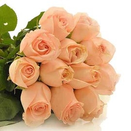 buy 12 peach roses Bunch Same Day Delivery