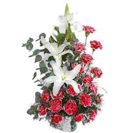buy Red carnations n White lilies Basket Midnight Delivery