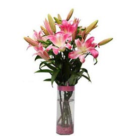 Send 4 Pink lilies glass Vase Same Day Delivery