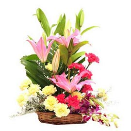 Send n Yellow carnations lilies n orchids Basket Midnight Delivery