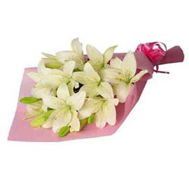 Send 6 White lilies Bunch Urgent Delivery