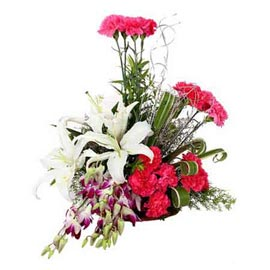 Send carnations orchids n White lilies Basket Same Day Delivery