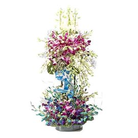 Send 50 purple n blue orchids cane Basket Urgent Delivery