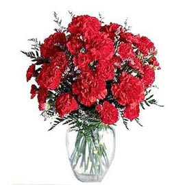 Send 20 Red carnations glass Vase Same Day Delivery