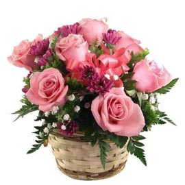 Send 12 Pink roses cane Basket 24 hrs Delivery