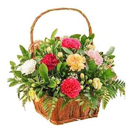 order 15 mix carnations cane Basket Urgent Delivery