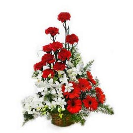 buy Red n White mix flowers cane Basket Midnight Delivery