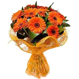 buy 10 Orange gerberas jute Bunch Same Day Delivery