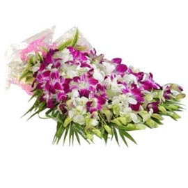 Send 10 purple orchids paper Bunch Same Day Delivery