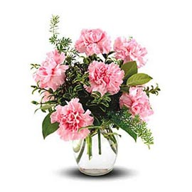 Send 10 Pink carnations glass Vase Same Day Delivery