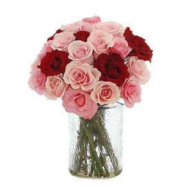 buy 20 Pink & Red roses glass Vase 24 hrs Delivery