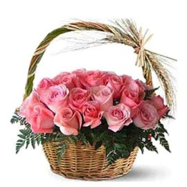 buy 25 Pink roses cane Basket Same Day Delivery