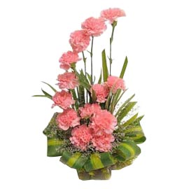 Send 12 Pink carnations cane special Basket 24 hrs Delivery