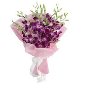 buy 10 purple orchids designer Bunch Midnight Delivery