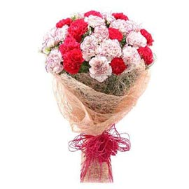 Send 10 Red n White carnations Bunch Midnight Delivery