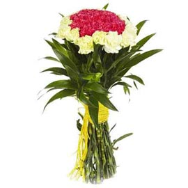 buy 20 Yellow n Red carnations Bunch 24 hrs Delivery
