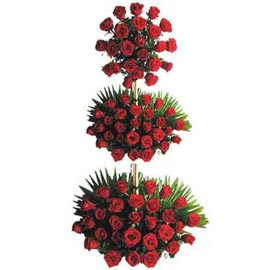 Send 100 Red roses tall Basket 24 hrs Delivery