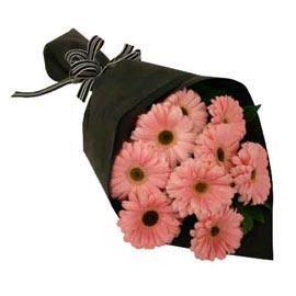 Send 10 Pink gerberas Bunch Midnight Delivery