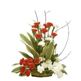 gift 15 Red n White carnations cane Basket Urgent Delivery