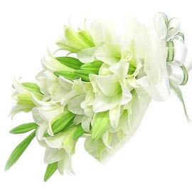 buy 6 White lilies paper Bunch Same Day Delivery