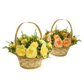 buy 24 mix roses cane Basket Same Day Delivery