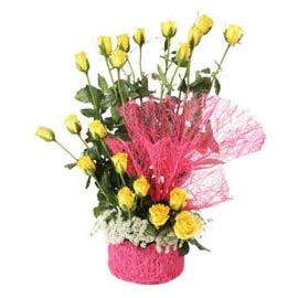Send 20 Yellow roses Basket express Delivery