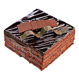 24 hrs 1 Kg Chocolate square Cake Online Delivery